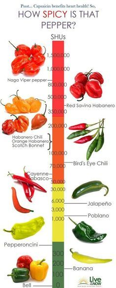How spicy is that pepper?