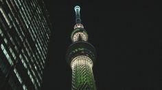 """""""世界一高いツリー""""  クリスマスイベント 新川優愛さんが点灯"""