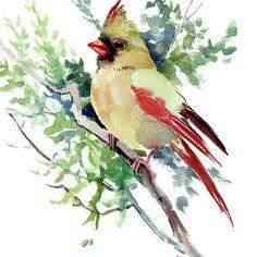 Cardinal Bird Artwork, original one of a kind watercolor bird art, female cardinal bird, bird lover, bird watercolor by ORIGINALONLY on Etsy Watercolor Bird, Watercolor Paintings, Watercolours, Bird Illustration, Illustrations, Bird Drawings, Drawing Birds, Cardinal Birds, Bird Artwork