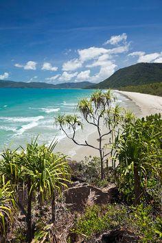 View through pandanus palms to Noah Beach.  Daintree National Park, Queensland, Australia   Andrew Watson Photography