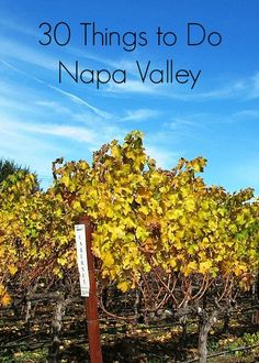 30 suggestions for Napa Valley: where to taste wine, eat, and have fun | This Is My Happiness
