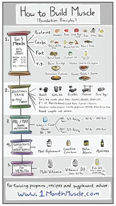nutrition healthy food weight loss fitness tips How to Build Muscles - Foundation Principles. Remember to check my site out for more tips Fitness Workouts, Fitness Motivation, Lifting Workouts, Weight Training Workouts, Training Plan, Weight Gain Workout, Strength Training, Fitness Goals, Nutrition Crossfit