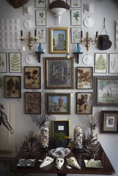 With black walls trending in home decor, the latest designs are giving off a dark and moody vibe. The look is being paired with vintage pieces that look like there straight out of a Victorian curiosities cabinet.