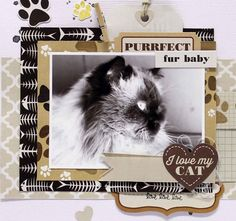purrfect fur baby - layout - Anita Bownds  (2)