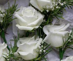 ¡Feliz Viernes! !feliz fin de semana! ¡¡Que frioooooo!, para estos días tristones Cortinas Ibáñez les da un consejo, levántense con una sonrisa y serán más felices. https://www.facebook.com/pages/Cortinajes-Ibañez/285146811496396