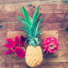 Good morning ☀️☀️☀️#breakfast made of #love to #travel #pineapple #dragonfruit #healthyfood #healthylife #feelfreeandmoveforward