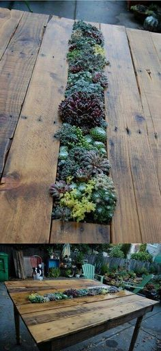 Old pallet reused - piece of rain gutter holds plants... Make removable so can exchange for empty one. When guests come over, use empty one to hold ice for beverages. Two for one!