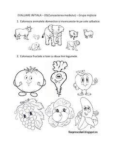 FISE de evaluare initiala - DS - Cunoasterea mediului - Grupa mijlocie | Fise de lucru - gradinita Farm Animals Preschool, Kindergarten Worksheets, Preschool Activities, Wine Cork Crafts, Paper Trail, Design Case, Cross Stitch Embroidery, Little Boys, Homeschooling