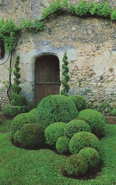 Garden gate ideas and inspiration: a boxwood garden with beautiful topiaries and balls. Garden gate ideas and inspiration: a boxwood garden with beautiful topiaries and balls. Boxwood Garden, Topiary Garden, Topiaries, Boxwood Topiary, Topiary Plants, Brick Garden, Formal Gardens, Outdoor Gardens, Formal Garden Design