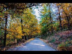 Sidewalk, Country Roads, Autumn, Spaces, Fall Season, Side Walkway, Walkway, Fall, Walkways