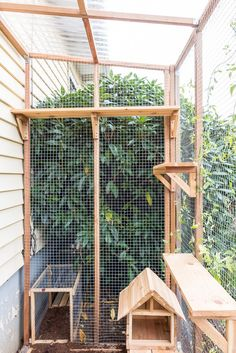 Want to let your cats outdoors, but keep them protected? Check out these tips and advice for building a catio. Diy Cat Enclosure, Outdoor Cat Enclosure, Cat Fence, Cat Cages, Cat Run, Cat Playground, Outdoor Cats, Outdoor Cat Cage, Cats And Kittens