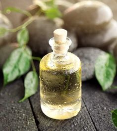 Remedies For Hair How To Use Tea Tree Oil To Promote Hair Growth - It's a fact that here are no miracle solutions that can give you thick and long hair overnight. However, considering tea tree oil for hair growth can help you Coconut Oil Hair Treatment, Coconut Oil Hair Growth, Coconut Oil Hair Mask, Hair Growth Oil, Tea Tree Oil Uses, Tea Tree Oil For Acne, Coconut Oil Tea, Natural Coconut Oil, Oils For Dandruff