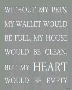 Without my pets … my heart would be empty Source by dog dog memes dog videos videos wallpaper dog memes dog quotes dogs dogs pictures dogs videos puppies puppy video Yorkies, Pomeranians, Bichons, Chihuahuas, Cathy's Book, I Love Dogs, Puppy Love, Animal Quotes, Crazy Cats