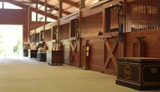 Bridlewood Farm Aiken SC | Premiere Hunter & Jumper Training and Boarding Facility