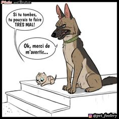 Adorable Brutus And Pixie Comic Funny Animal Comics, Cute Animal Memes, Animal Jokes, Cute Funny Animals, Funny Cute, Bd Comics, Cute Comics, Funny Comics, Pixie