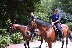 Mounted Police, Budapest