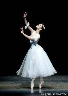 Olesya Novikova in La Sylphide. Photo by Gene Schiavone. Ballet Images, Ballet Photos, Dancers Feet, Ballet Dancers, Ballet Costumes, Dance Costumes, Baby Costumes, Tulle Skirt Tutorial, Pretty Ballerinas