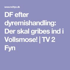 DF efter dyremishandling: Der skal gribes ind i Vollsmose! | TV 2 Fyn