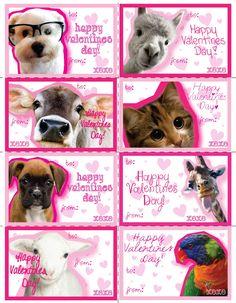 printable valentine kids animal valentinepinkowlpartydesign, Ideas