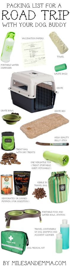 Packing List for a Road Trip with your Dog.