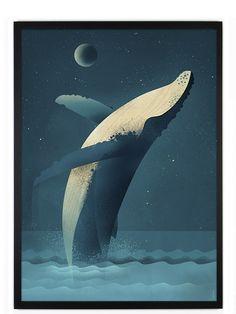 Dieter Braun Humpback Whale Poster