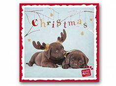 Myrna - Print Arts von Studio PetsMyrna Weihnachtskarte: Labrador 1