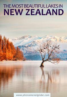 Here you can find the most beautiful lakes in New Zealand: Lake Tekapo, Lake Pukaki, Laka Wakatipu, Moke Lake, Lake Wanaka, Lake Hawea, Lake Paringa, Matheson, Lake Mahinãpua and The Emerald Lakes. #NewZealand #southisland #northisland Pacific Destinations, New Zealand Destinations, New Zealand Travel Guide, Amazing Destinations, Brisbane, Melbourne, Sydney, Lake Wanaka, Lake Tekapo