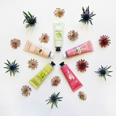#Handcreme #Cream #Beauty #Beautyproduct #Cosmetics #Crabtreen&Evelyn #Hands #Flowers #Decoration