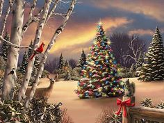 Beautiful Snow Scenes At Christmas | Winter Scene - Christmas Photo (26916360) - Fanpop fanclubs