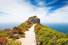The weekend is almost here! Check out our Friday 'Pic of the Week' (Cape Point, South Africa) and have a wonderful weekend everyone :D