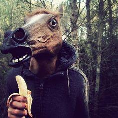 Even horses like bananas