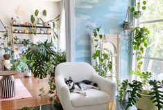 A painted cloud mural and tons of greenery are featured in this amazing living room. The mural was completed with four Clare paint colors, Nairobi Blue, Frozen, Classic, and Fresh Kicks. Condo Living Room, Living Spaces, Living Rooms, Best Blue Paint Colors, Interior Styling, Interior Design, Urban, High Quality Furniture, Living Room Inspiration