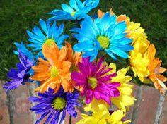 colorful flowers - Cerca con Google