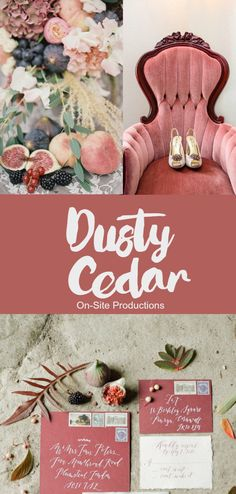 Pantone Fall 2016 Color Report: Dusty Cedar--I love this warm, pop of rose-toned pink!