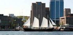 Sail Halifax Harbour aboard Tall Ship Silva and see the city from a new vantage point – the sea! Halifax Waterfront, Halifax Explosion, City By The Sea, Historical Landmarks, Tall Ships, Nova Scotia, Where To Go, East Coast, Saint Seiya
