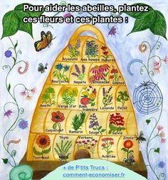 Plantez ces Fleurs Et ces Plantes Pour Aider les Abeilles ! Organic Gardening, Gardening Tips, Container Gardening, Foliage Plants, Planting Plants, Verge, Permaculture Design, Grow Tent, Aquaponics System
