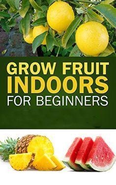 Grow Fruit Indoors For Beginners: Surprisingly Exotic Fruits That Can Grow Indoors! Fruit Plants, Fruit Garden, Edible Garden, Fruit Trees, Box Garden, Citrus Trees, Growing Veggies, Growing Herbs, Container Gardening