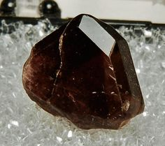 Axinite, Olivia Mine, Rosa de Castillo, Tecate, Baja California Norte, Mexico.  Length 1.2 cm