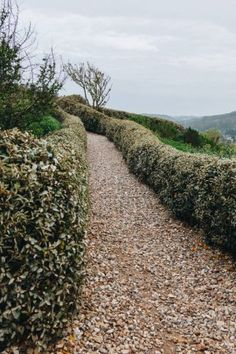 Pathway in beautiful scenic gadgen in etretat, france on cloudy day Toulouse, Bordeaux, Etretat France, Cloudy Day, Garden Supplies, Walkway, Pathways, Arch, Castle