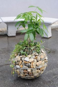 Diy craft ideas using wire mesh and Stones   My desired home
