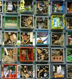Insect Hotels Abound at Chelsea Flower Show : TreeHugger Chelsea Flower Show, Philadelphia Flower Show, Smelling Flowers, Bug Hotel, Garden Insects, Animal Habitats, Beautiful Bugs, Beneficial Insects, Dry Leaf