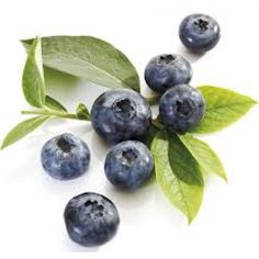 9 Health Benefits of Blueberry Junk Food, Lchf, Oat And Raisin Cookies, High Antioxidant Foods, Ways To Lower Cholesterol, Whole Food Recipes, Healthy Recipes, Healthy Food, Grass Fed Meat