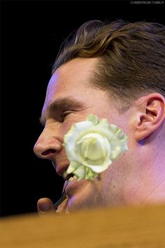 HAY FESTIVAL, LETTERS LIVE (May 31, 2014) ~ Benedict Cumberbatch at Letters Live with a rose in his teeth after reading a Kurt Vonnegut letter about book burning.