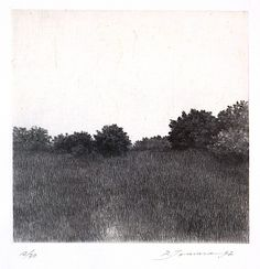 Shigeki Tomura was born in 1951 in Hachinohe, Japan. He participated in the Kokuga Association exhibitions He is devoted to printmaking, drypoint and etching, in particular. Although Tomura makes beautiful drawings and watercolors, the line Landscape Drawings, Landscape Paintings, Landscapes, Photoshop Elements, Intaglio Printmaking, Gravure Illustration, Davidson Galleries, Forest Light, Etching Prints