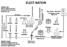 Elect Nation