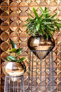 #Rialheim #handmade #tile #walltile #light #planter #stands #ceramic #bronze #madeinsa #interior #design #interiordesign #madefromafrica #featurewall #designinspo #decor #rialheim #flagship #store #johannesburg #Randsteam #dreambelievefly #ceramics #reimagined #HomeDecor #HomeRenovations #Decorinspo #Evolution #EvolutionByRialheim #Fun #Handcrafted #flowers #planter #vase Ceramic Table Lamps, Ceramic Decor, Wood Turning Projects, Beautiful Lights, Wall Tiles, Evolution, Planters, Bronze, Vase
