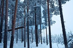 The super stylish Tree Hotel in Swedish Lapland is truly magical, with five 'floating' rooms suspended high in the trees.
