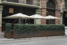 Cerveceria Catalana, Calle Mallorca, 235, Barcelona http://www.barcelonaandtheworld.com/en/cool/mejores-tapas-en-el-centro-de-barcelona-parte-i/