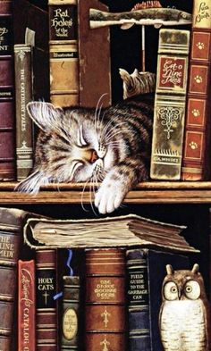 Sleeping cat in books – pretty sure this is by Charles Wysocki. Sleeping cat in books – pretty sure this is by Charles Wysocki. I Love Cats, Cute Cats, Funny Cats, Adorable Kittens, Crazy Cat Lady, Crazy Cats, Cat Sleeping, Cat Drawing, Cats And Kittens