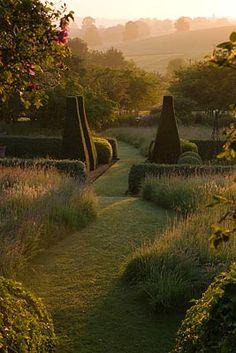The Pettifers garden parterre in the dawn light